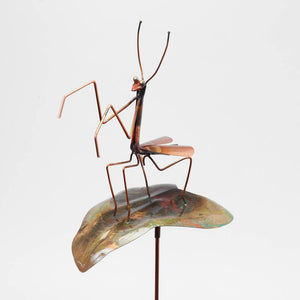 Small Praying Mantis on a Leaf Garden Stake