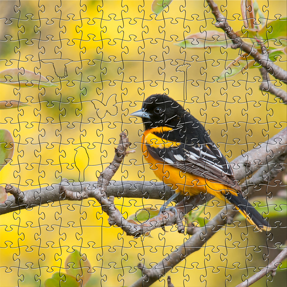 Baltimore Oriole Zen Puzzle - Heart of the Home PA