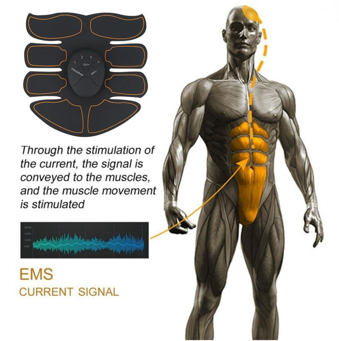 EMS Muscle Stimulator Abdominal Muscle Toner
