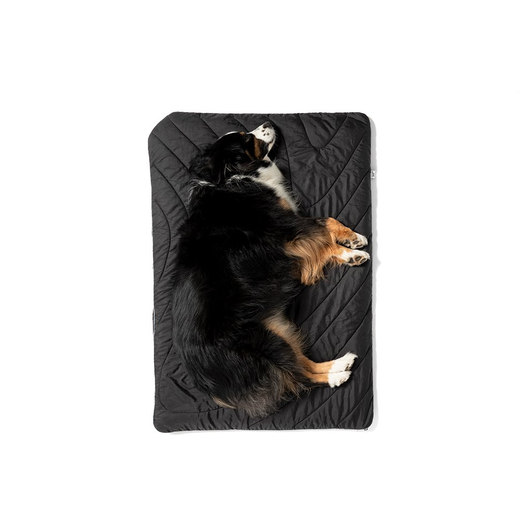 Rumpl | The Travel Dog Bed |  |  | Travel Dog Bed