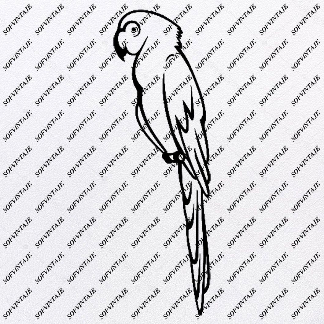 Parrot - Parrot Svg File - Parrot Svg Design - Clipart - Tattoo Svg File - Bird  Png - Parrot Vector Graphics - Svg For Cricut - For Silhouette - SVG - EPS - PDF - DXF - JPG - PNG - AI