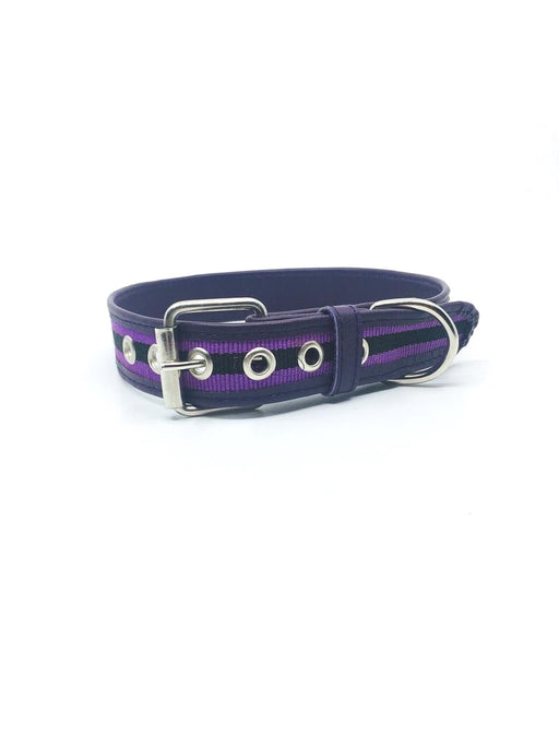 Extra Large Purple Leather Collar