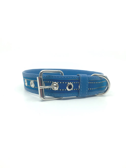 Large Light Blue Leather Collar