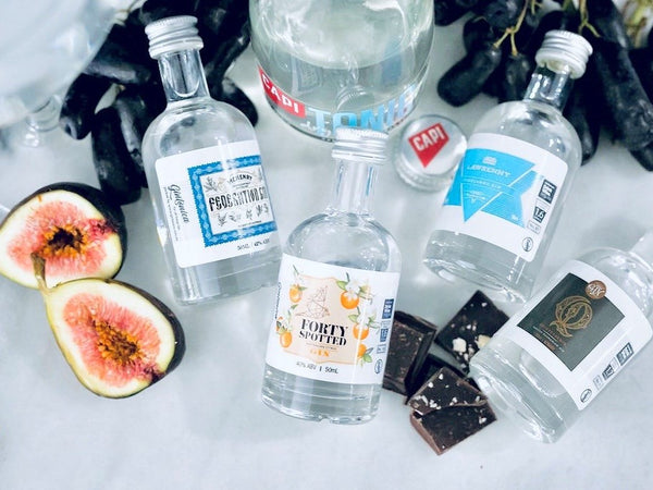 gintonica gin and capi tonic cocktail kit with dehydrated fruit and gourmet chocolate