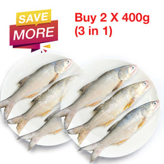 [Double Deal] Threadfin / Ikan Senangin / 马友鱼 - Whole