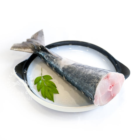Spanish Mackerel Tail / 竹加鱼尾巴