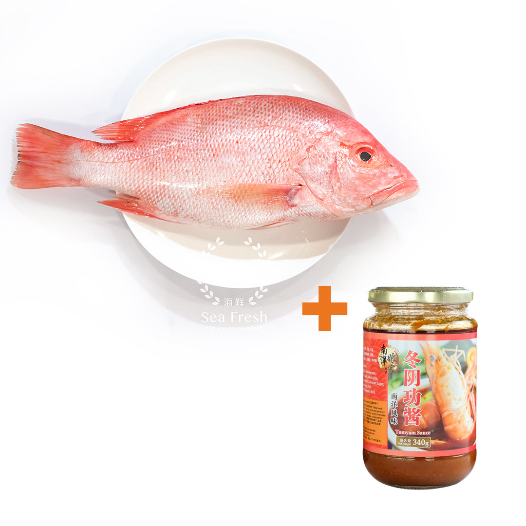 Red Fish / Ikan Merah + Tomyam Sauce  [ 红鱼 + 冬阴功酱  ]