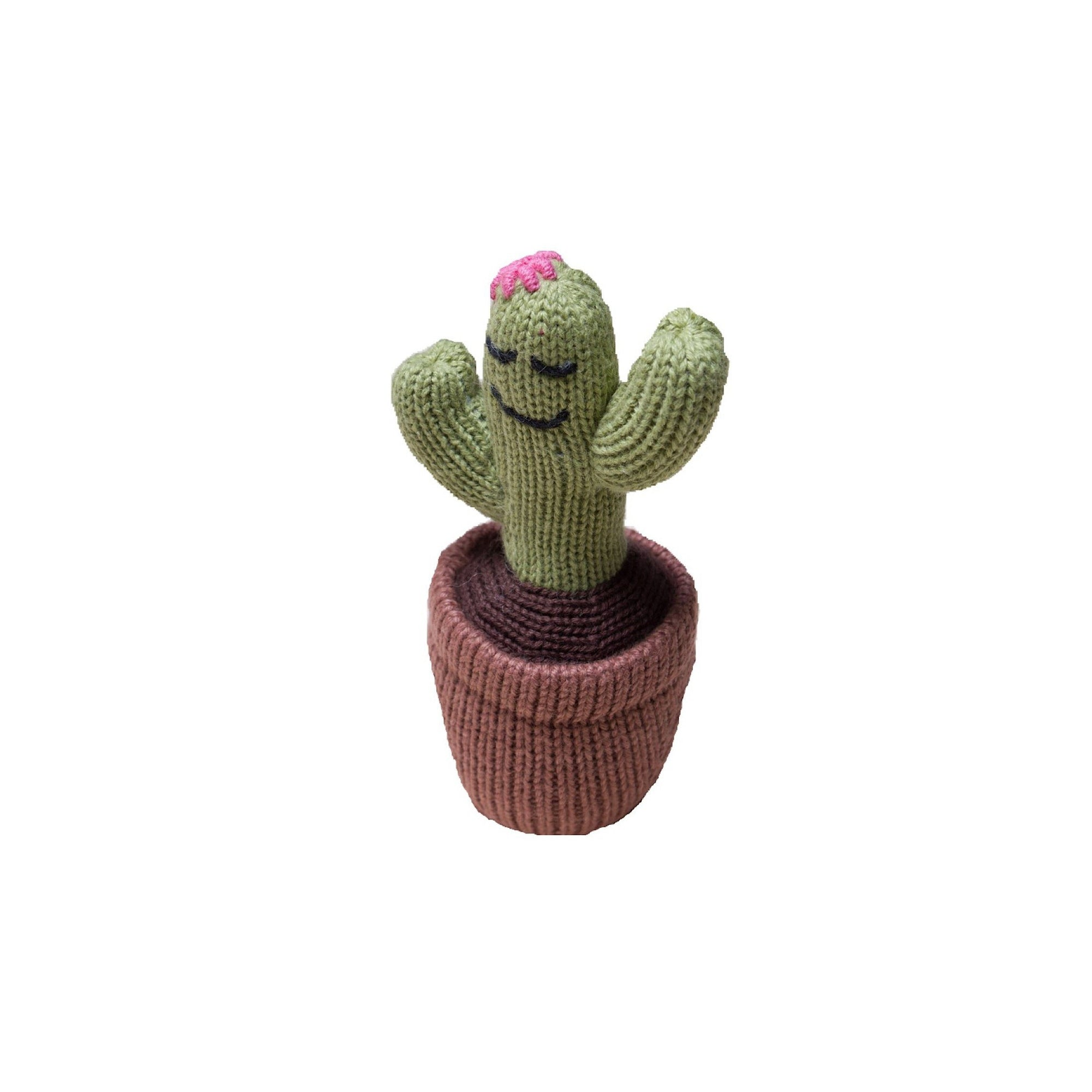 Organic Sleeping Cactus Knit Rattle
