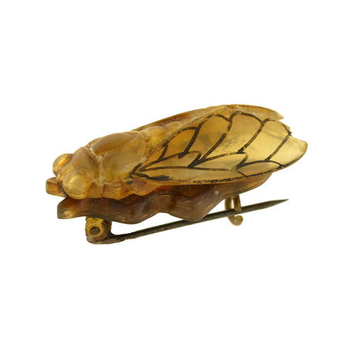 Victorian Hand Carved Celluloid Cicada Bug Pin