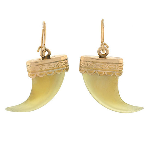 Victorian 14kt Natural Tiger's Claw Earrings