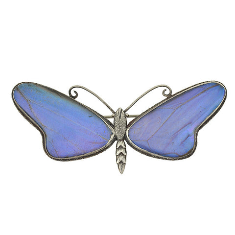 Art Deco Huge Sterling & Real Butterfly Wing Pin