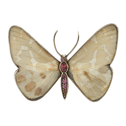 Victorian Sterling Pink Tourmaline & Real Butterfly Wing Pin