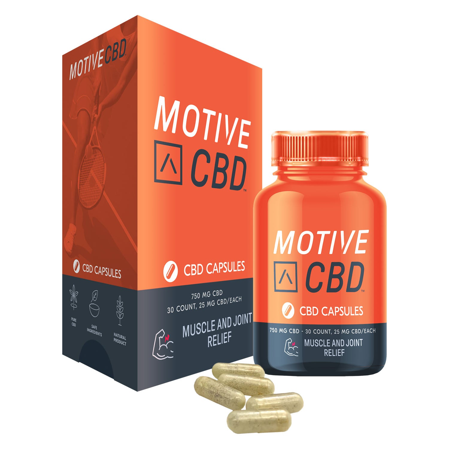 MOTIVE Muscle Joint Capsules