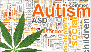 CBD for autisme