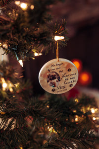 Custom Pet Memorial Ornament, Loss of Pet, Christmas, Gift for Family