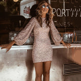 Sequin Lantern Sleeve Dress