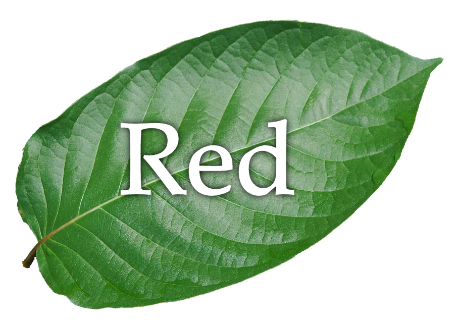 Red Thai Powder
