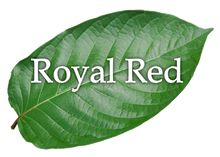 Load image into Gallery viewer, Royal Red Extract Enhanced