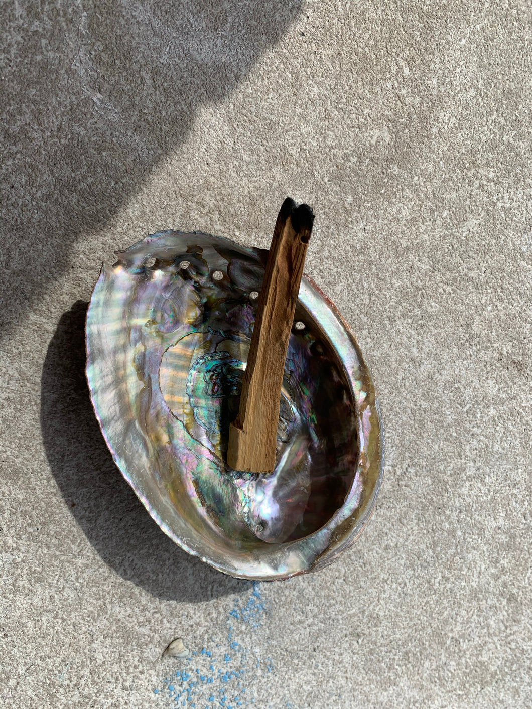 Abalone Shell- For Smudge or Incense