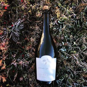 Bottle of Silver Swallow Kombucha in frost tipped greenery with dotted lingon berries around it