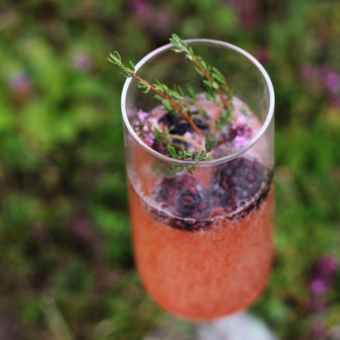 Upclose picture of flowering thyme and blackberries in kombucha cocktail