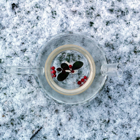 Eastern Teaberry's steeps in a glass teapot in a snowy scene