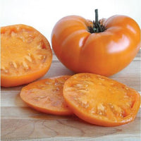 "Kelloggs Breakfast tomato- 4"" pot"
