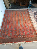 Pakistani Hand Knotted Rug