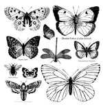Afbeelding in Gallery-weergave laden, Stamp Iron Orchid Stamps Butterflies