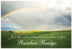Dog Speak - Rainbow Bridge Greeting Card