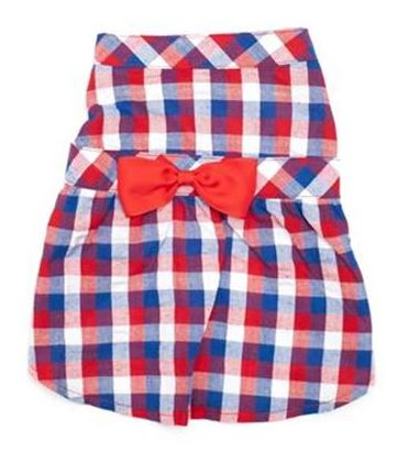Red/White/Blue Check Dress