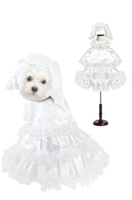 Pampet Wedding Dress for Dogs