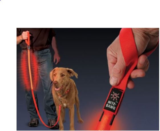 Nite Dawg - LED Dog Leash