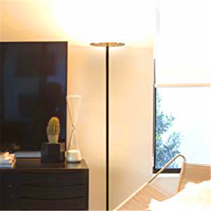 Modern, Minimalist Floor Lamp w/ Remote Control for Bedroom or Living Room