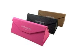 Fashion Collapsible Case
