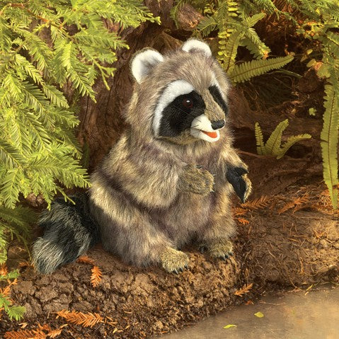 Raccoon Folkmanis 3075