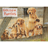 Golden Puppies Pz500