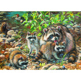 Raccoon Family Pz350