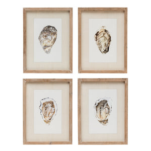 Oyster Wall Art w/Wood Frame