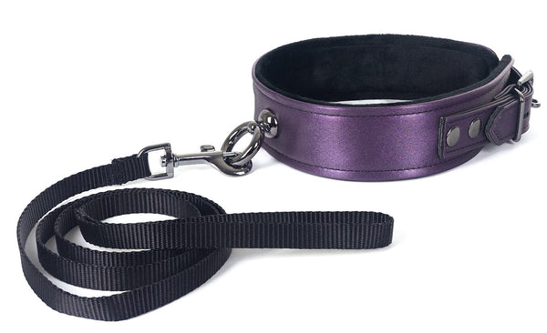 Galaxy Legend Collar and Leash Purple from Spartacus Leathers