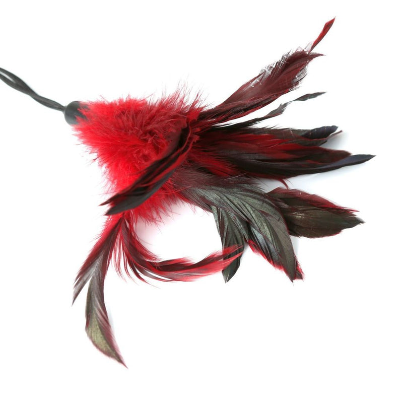 PLEASURE FEATHERS-RED(EA)