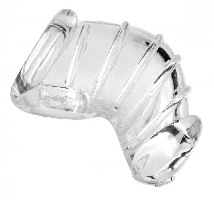 Master Series Detained Chastity Cage