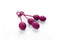 SVAKOM Nova Silicone Kegel Exercise Ben Wa Ball Set Violet