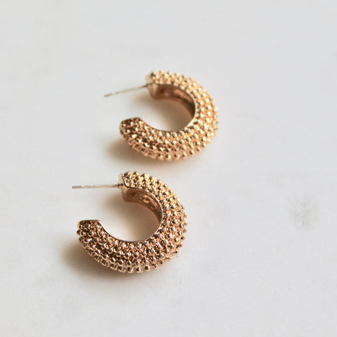 Gold hoops - Lily Lough Jewelry