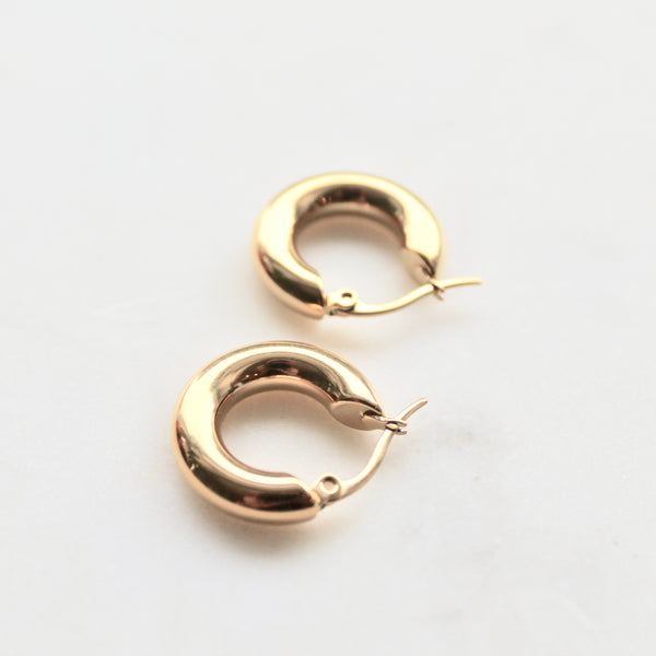Shiny gold little hoops earrings - Lily Lough Jewelry