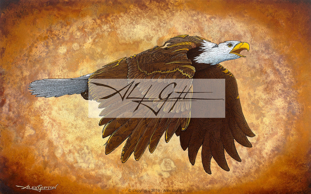 11x14 Paper Prints - Golden Eagle