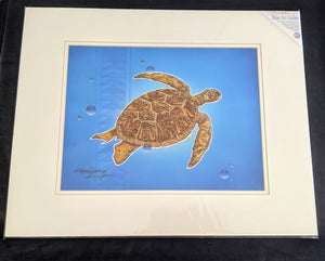 "SC - Paper Giclee Print 16x20- ""Tribal Turtle"""