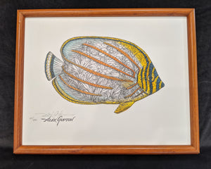 "SC - Framed Canvas Giclee 11x14 - ""Ornate Butterflyfish"" #66/250"