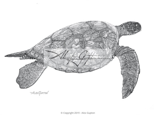 11x14 Paper Prints - Visions of the Honu
