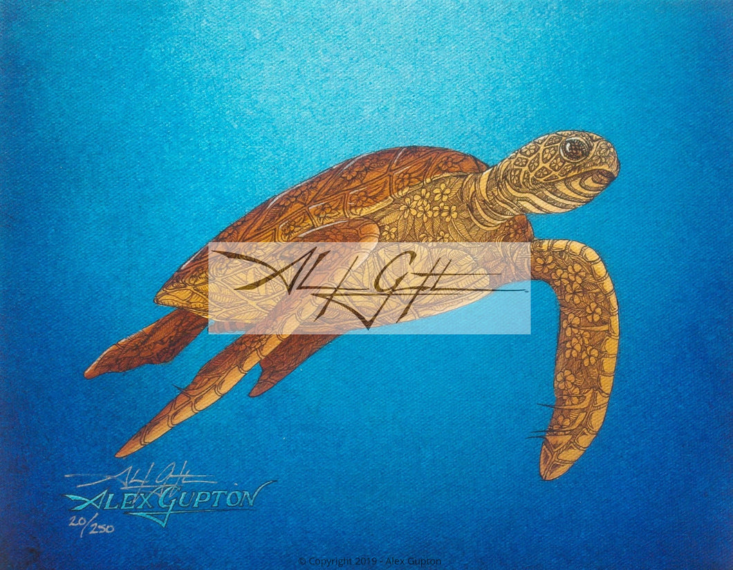 Floating Honu (Turtle) Mini Canvas Giclee 8x10
